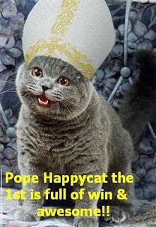 OUI j'ai un album photo entier dédié à mes chats sur Facebook. Même pas honte !